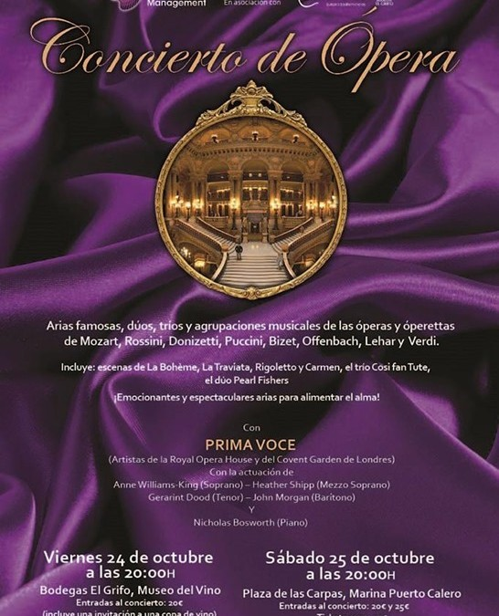 Gala Opera & Operetta Concerts