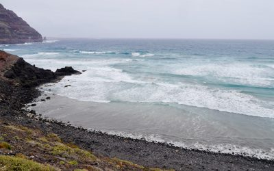 Fascinating nature walks in the North of Lanzarote