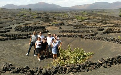Five 'influencers' fall in love with Lanzarote