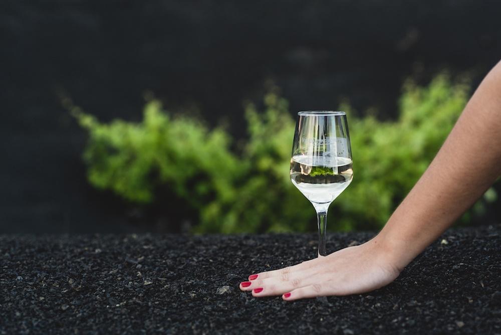 Lanzarote Wines