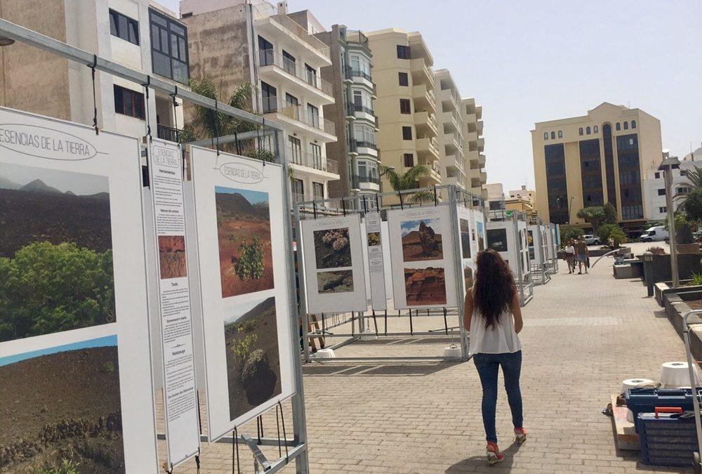 """The avenue of Arrecife hosts the exhibition """"Esencias de la tierra"""""""