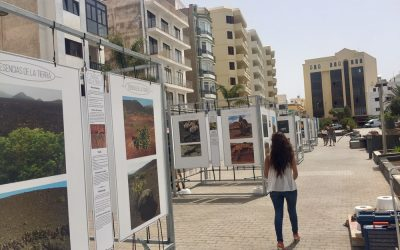 "The avenue of Arrecife hosts the exhibition ""Esencias de la tierra"""