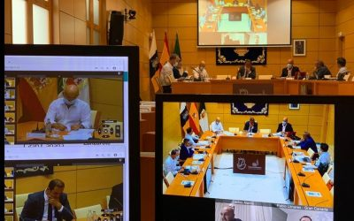 The Cabildos de Canarias coordinate measures in tourism in the face of Covid-19