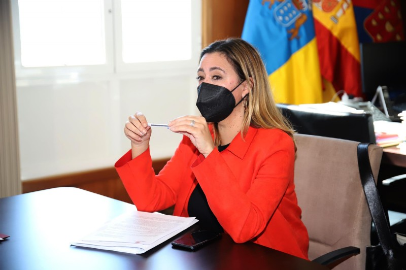 The Cabildo creates a line of aid to the self-employed and micro-SMEs endowed with six million euros